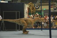 タルボサウルスvsT-REX