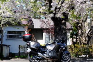 20100516-100516gtr.JPG